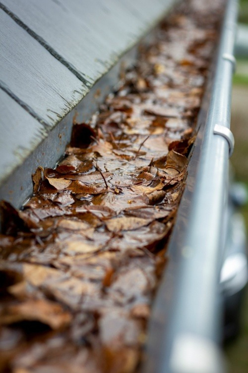 gutter maintenance service Hampshire