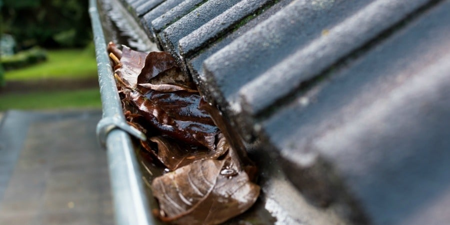 gutter maintenance service Woking